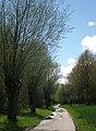 Wilgenweg - panoramio.jpg