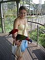 Woman feeding lorikeets at Jurong BirdPark-28Aug2006 (3).jpg