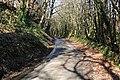 Woodland Road - geograph.org.uk - 321497.jpg