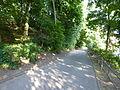 Wuppertal Hardt 2013 481.JPG