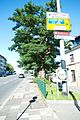 Wuppertal Hoeftstraße 2016 005.jpg