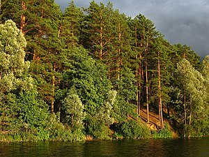Lake Yalchik - The landscape along the lake shore.