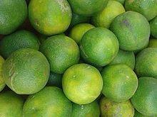 Citrus limetta - Wikipedia