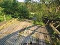 Žiūrai, Lithuania - panoramio.jpg