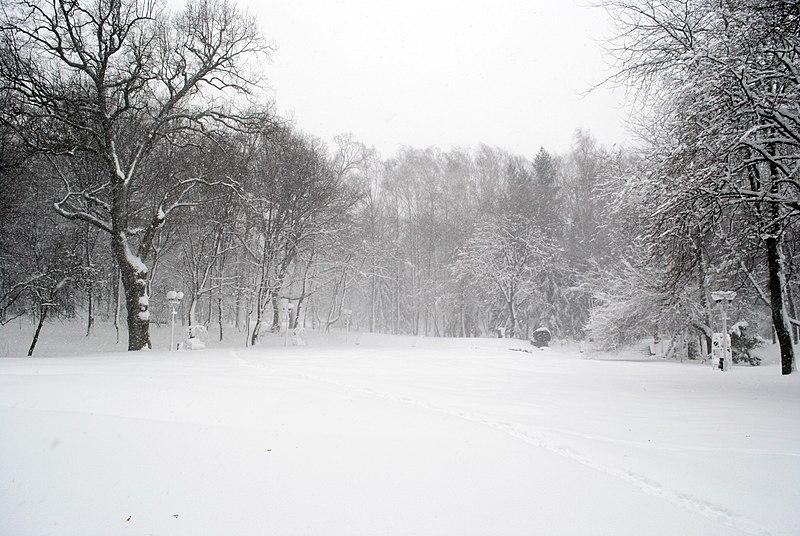 File:Вінниця - центральний парк 02.JPG