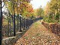 Дорога в осень fhdr.jpg