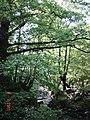 Заножане Botunj river - panoramio (5).jpg