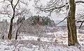 Зима. Вид на сосновую рощу у села Крутец.jpg