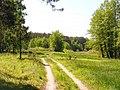 Любимые ранее места для пчелиных пасек. Справа Двуреченское Займище - panoramio.jpg