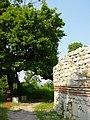 Монтана - античната крепост - panoramio (6).jpg