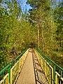 Мост в парк весной.jpg