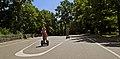 Міський сад в Києві DSC 8446.JPG