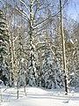 Недалеко от Алексеевского - panoramio.jpg