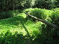 Спуск к ключику - panoramio.jpg