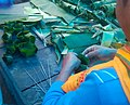 পুৰুষ গিয়াতি সকলে কল পাতেৰে থলা সাজি থকা মূহুৰ্ত.jpg