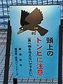 三笠公園 - panoramio (25).jpg
