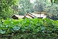 中国江苏省苏州市平江区 China Jiangsu Suzhou City, Province, Pingji - panoramio (19).jpg