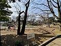 文庫の森.jpg