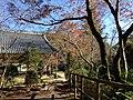 槙尾山西明寺客殿 - panoramio.jpg