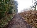 -2021-02-28 Weavers Way, Felmingham.JPG