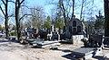 - Cmentarz Nowofarny - panoramio (28).jpg