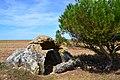 01-dolmen de cornevache.jpg