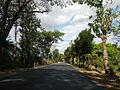 09376jfBinalonan San Manuel Pangasinan Barangays Roads Landmarksfvf 11.JPG