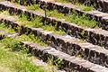 15-07-13-Teotihuacan-RalfR-WMA 0188.jpg