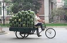 自行三轮车