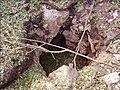 2006 Lebanon War. CXVII.jpg