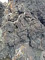 2014-07-18 17 09 19 Closeup of basalt in the Black Rock Lava Flow, Nevada.JPG