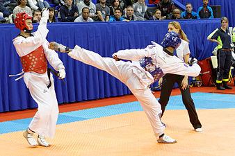 2014 French Open Taekwondo - Maksat Allalyev vs Dylan Chelamootoo 02.jpg