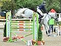 2015年「紀の国わかやま国体」の六段障害飛越競技で、飛越する人馬の林義昌とキャリーズサン.JPG