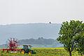 20150523 Naturpark Saar-Hunsrück Irsch Traktor Baum Greifvogel IMG 4554 by sebaso.jpg