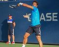 2015 US Open Tennis - Qualies - Jose Hernandez-Fernandez (DOM) def. Jonathan Eysseric (FRA) (20957362842).jpg