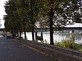 2020 Maastricht, Maaspuntweg, Kennedybrug.jpg
