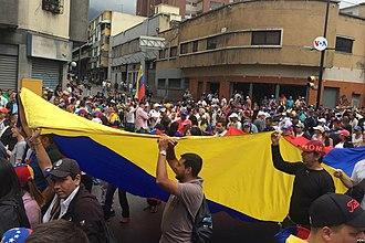 2019 Venezuelan protests - 23 January 2019 protestors