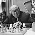 28e Hoogoven schaaktoernooi te Beverwijk, Czerniak (Israel), Bestanddeelnr 918-6675.jpg