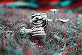 3D CMS CC-BY (15550064677).jpg