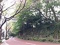 3 Chome Jindaiji Motomachi, Chōfu-shi, Tōkyō-to 182-0017, Japan - panoramio.jpg
