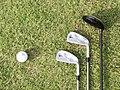3 golf clubs and ball at Wakasu Golf Links, Tokyo.jpg