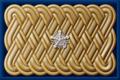6-13. Статский советник Министерства народного просвещения, 1897–1904 гг.png