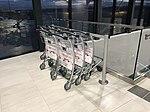 Aéroport de Lyon-Saint-Exupéry - terminal 1B - mars 2018 - chariots.jpg