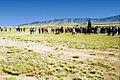 A022, Trinity Site, White Sands Missile Range, New Mexico, USA, 2001.jpg