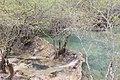 A6 2012 -06 -05 huanglong liuzusai - panoramio (4).jpg
