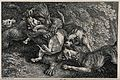 A bear is fighting off an attack by a pack of dogs. Etching Wellcome V0021852.jpg