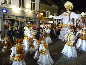 Carnival of Aalst - The 2009 edition
