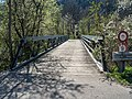 Adelbach Brücke über den Necker, Oberhelfenschwil SG 20190420-jag9889.jpg