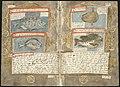 Adriaen Coenen's Visboeck - KB 78 E 54 - folios 149v (left) and 150r (right).jpg