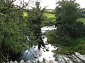 Afon Alaw below Pont Hafren bridge - geograph.org.uk - 990724.jpg